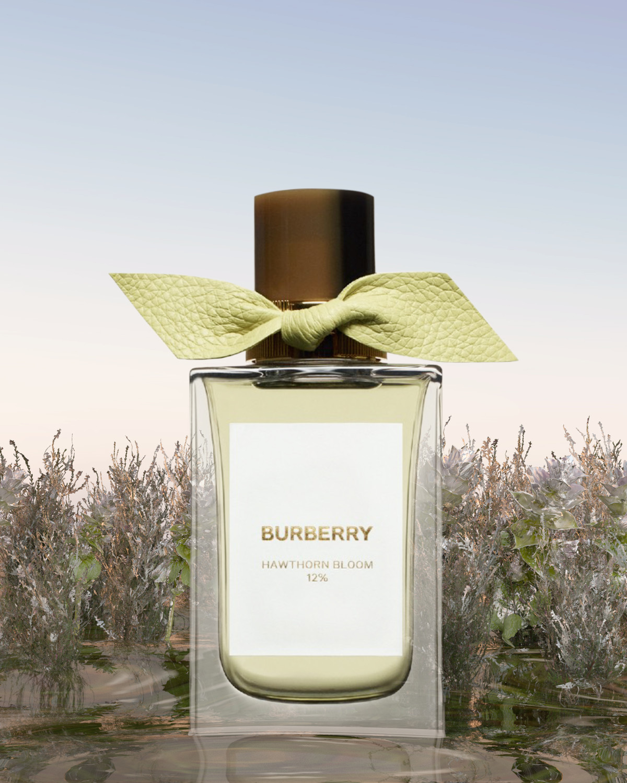 Burberry Beauty - © Benjamin Muzzin